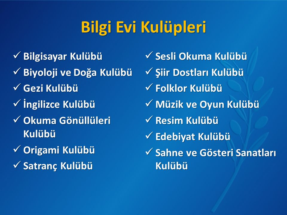 Bilgi Evi Kulüpleri  Bilgisayar Kulübü  Biyoloji ve Doğa Kulübü  Gezi Kulübü  İngilizce Kulübü  Okuma Gönüllüleri Kulübü  Origami Kulübü  Satra