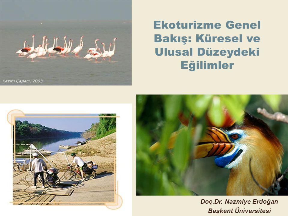 Ekoturizme Genel Bakış: Küresel ve Ulusal Düzeydeki Eğilimler Doç.Dr. Nazmiye Erdoğan Başkent Üniversitesi