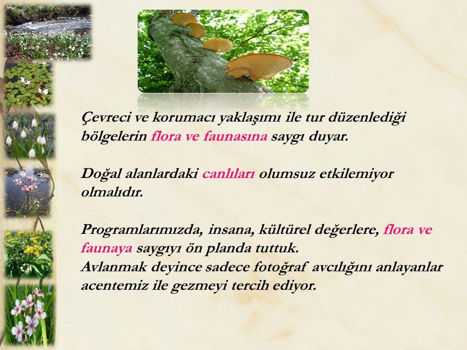 Çevreci ve korumacı yaklaşımı ile tur düzenlediği bölgelerin flora ve faunasına saygı duyar. Doğal alanlardaki canlıları olumsuz etkilemiyor olmalıdır
