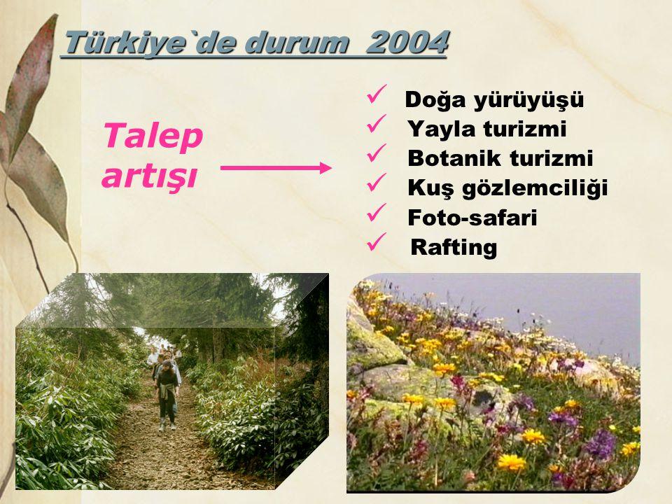 Türkiye`de durum 2004  Doğa yürüyüşü  Yayla turizmi  Botanik turizmi  Kuş gözlemciliği  Foto-safari  Rafting Talep artışı