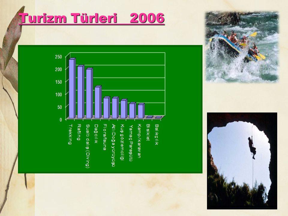 Turizm Türleri 2006
