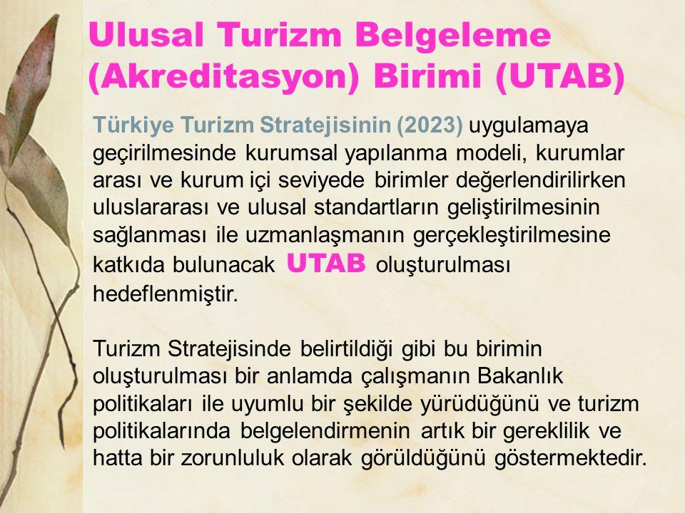 Türkiye Turizm Stratejisinin (2023) uygulamaya geçirilmesinde kurumsal yapılanma modeli, kurumlar arası ve kurum içi seviyede birimler değerlendirilir