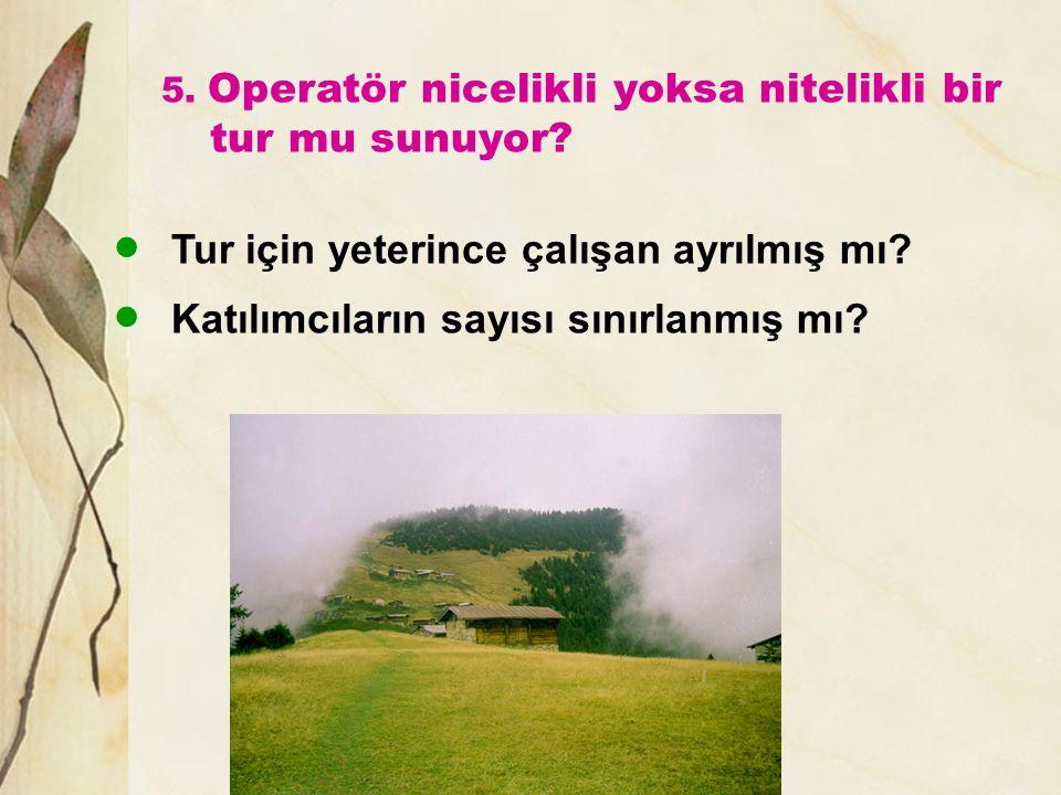 5. Operatör nicelikli yoksa nitelikli bir tur mu sunuyor?  Tur için yeterince çalışan ayrılmış mı?  Katılımcıların sayısı sınırlanmış mı?