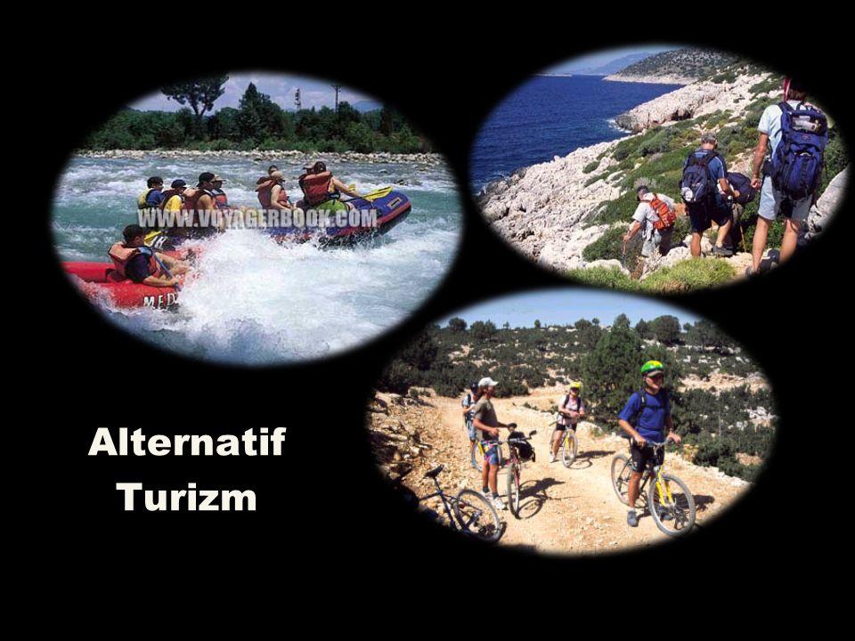 Alternatif Turizm