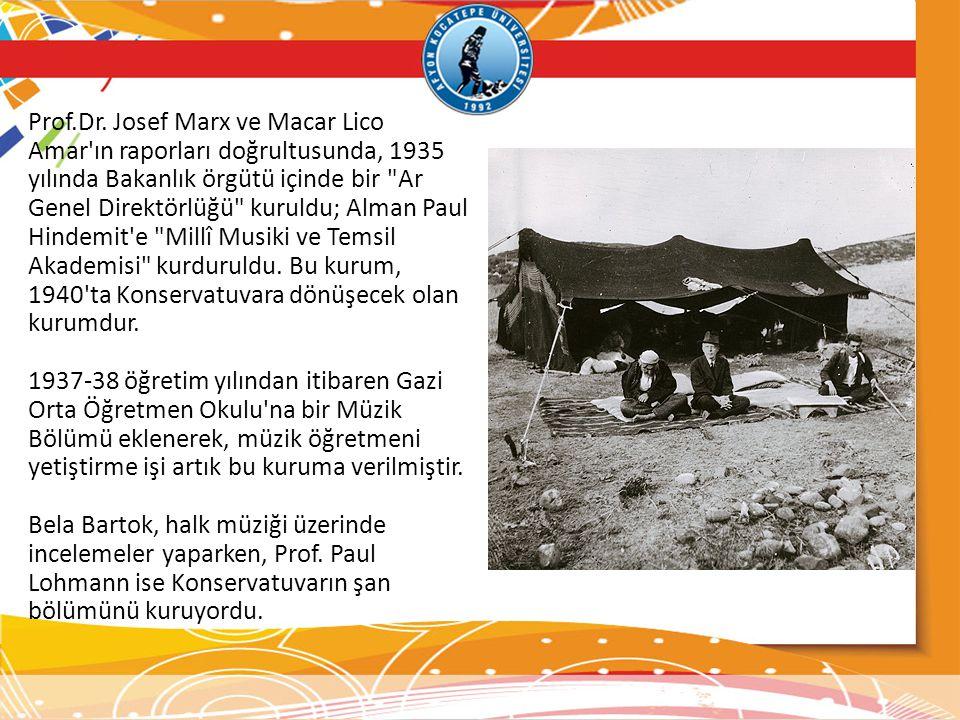 Prof.Dr. Josef Marx ve Macar Lico Amar'ın raporları doğrultusunda, 1935 yılında Bakanlık örgütü içinde bir