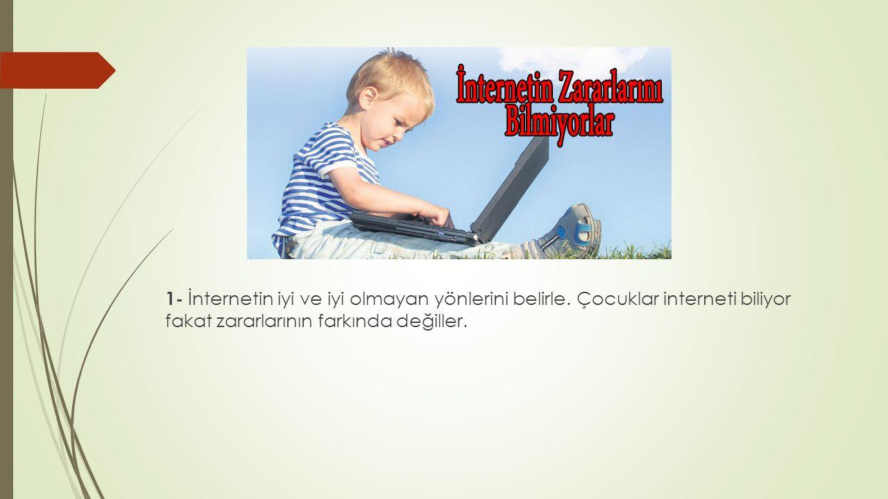 1- İnternetin iyi ve iyi olmayan yönlerini belirle.