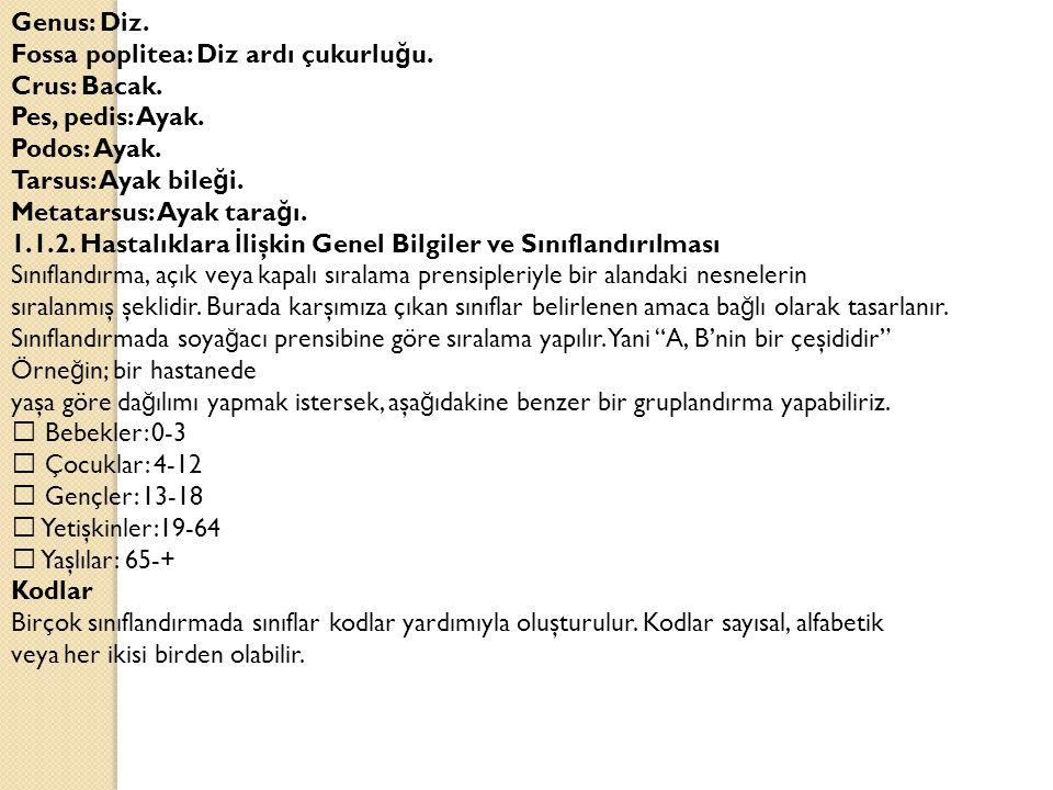 Sayısal kodlar: Sayısal kodları sayı dizileri oluşturur.