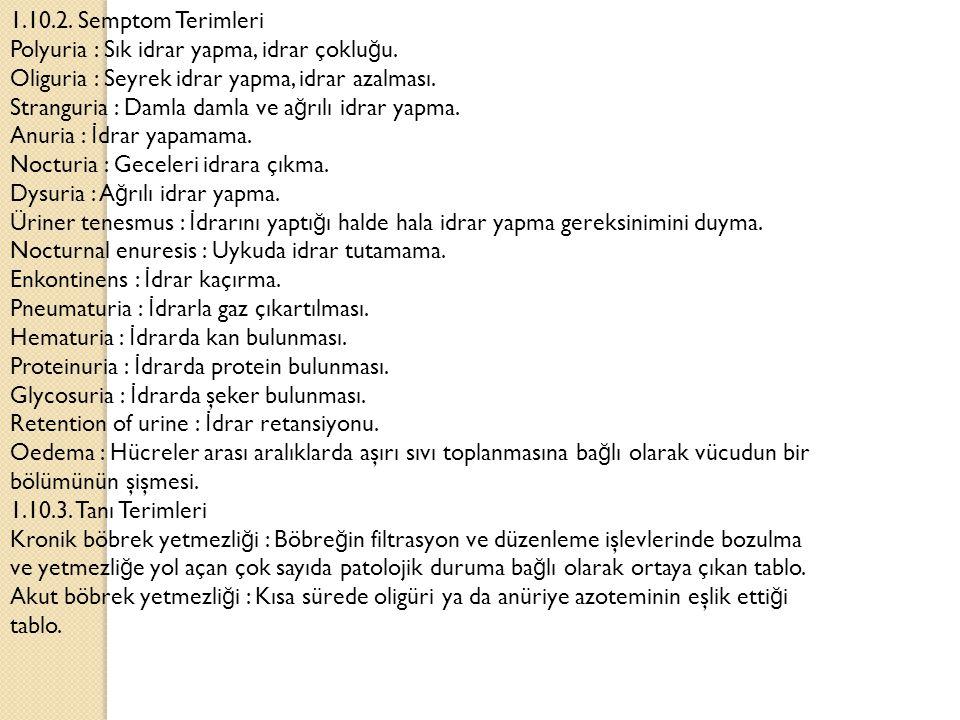 1.10.2.Semptom Terimleri Polyuria : Sık idrar yapma, idrar çoklu ğ u.