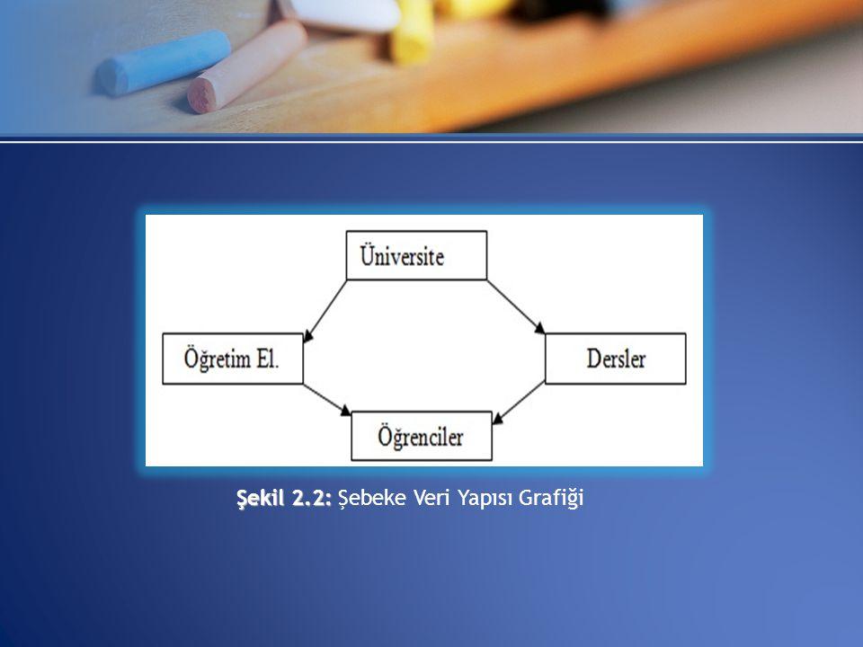 Şekil 2.2: Şekil 2.2: Şebeke Veri Yapısı Grafiği