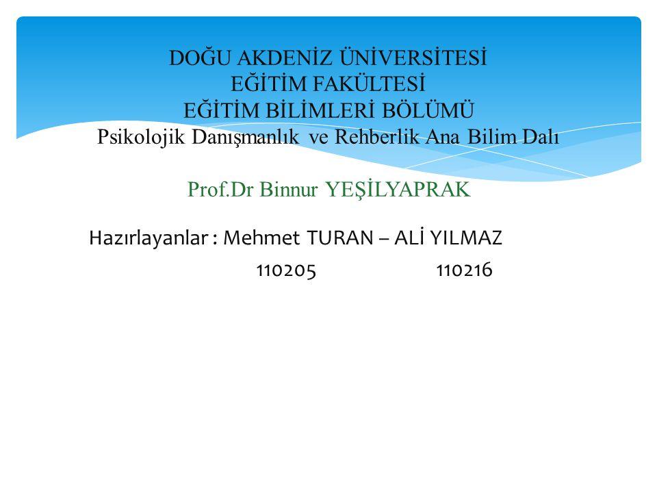 Hazırlayanlar : Mehmet TURAN – ALİ YILMAZ 110205 110216 DOĞU AKDENİZ ÜNİVERSİTESİ EĞİTİM FAKÜLTESİ EĞİTİM BİLİMLERİ BÖLÜMÜ Psikolojik Danışmanlık ve Rehberlik Ana Bilim Dalı Prof.Dr Binnur YEŞİLYAPRAK