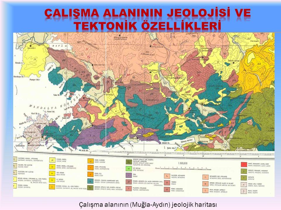 Çalışma alanındaki faylar ve son 1 yıl içerisindeki sismik olaylar