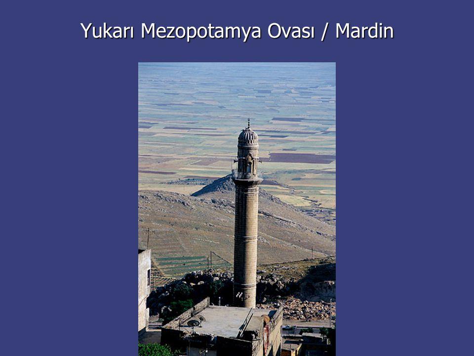 Yukarı Mezopotamya Ovası / Mardin
