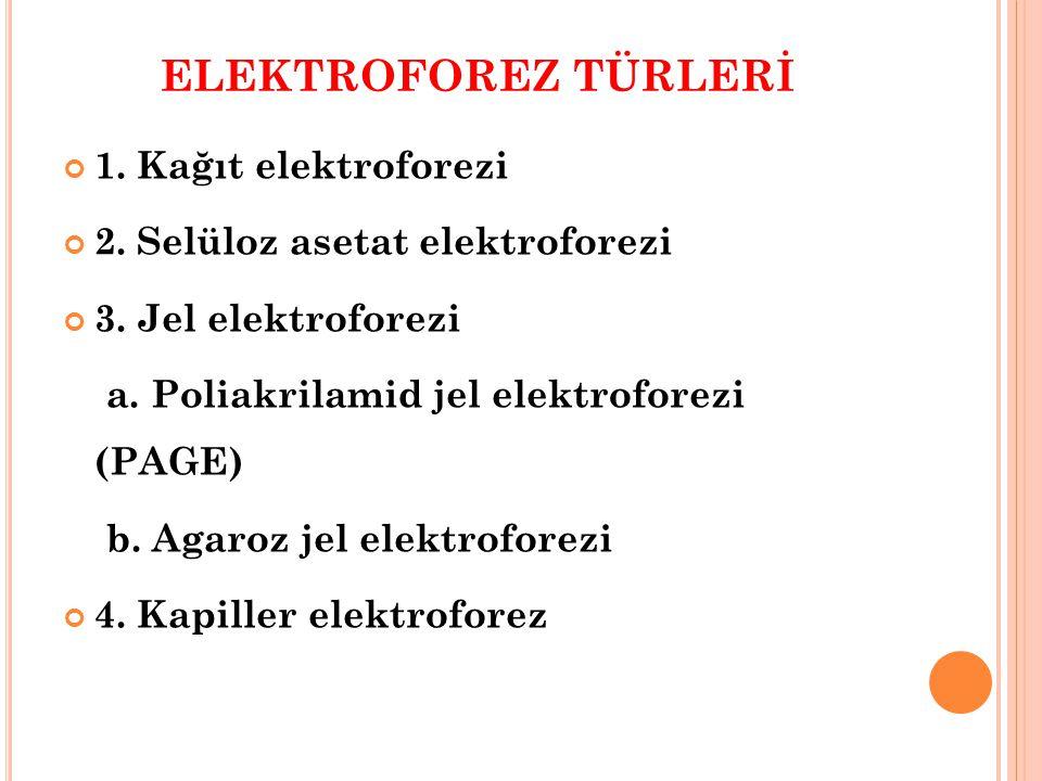 ELEKTROFOREZ TÜRLERİ 1. Kağıt elektroforezi 2. Selüloz asetat elektroforezi 3. Jel elektroforezi a. Poliakrilamid jel elektroforezi (PAGE) b. Agaroz j