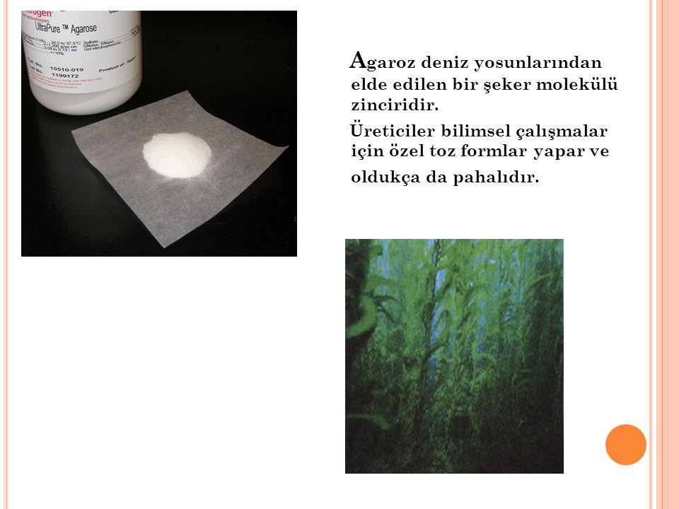 A garoz deniz yosunlarından elde edilen bir şeker molekülü zinciridir. Üreticiler bilimsel çalışmalar için özel toz formlar yapar ve oldukça da pahalı
