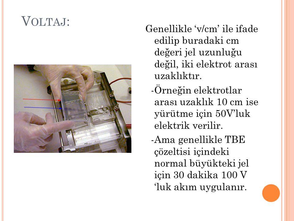 V OLTAJ : Genellikle 'v/cm' ile ifade edilip buradaki cm değeri jel uzunluğu değil, iki elektrot arası uzaklıktır.