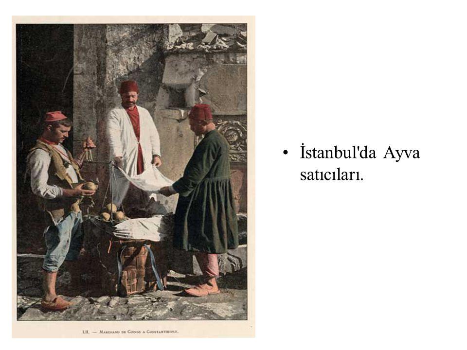 •İstanbul'da Ayva satıcıları.