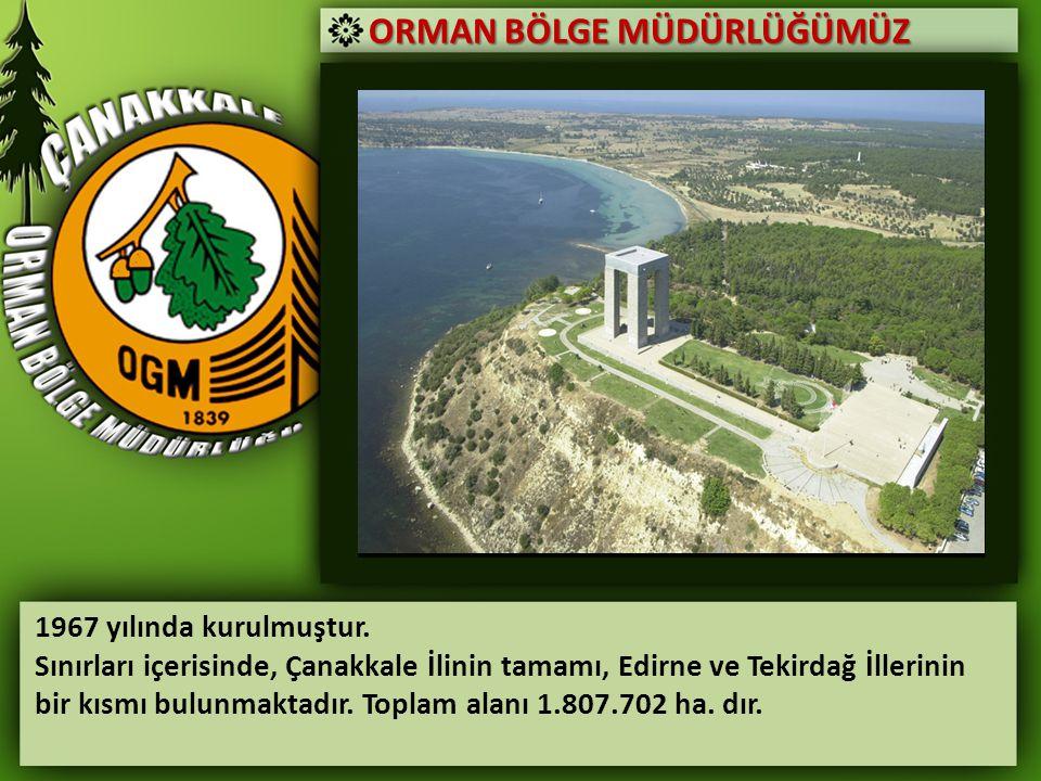 ORMAN BÖLGE MÜDÜRLÜĞÜMÜZ 1967 yılında kurulmuştur. Sınırları içerisinde, Çanakkale İlinin tamamı, Edirne ve Tekirdağ İllerinin bir kısmı bulunmaktadır