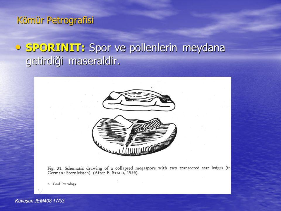 Kömür Petrografisi • SPORINIT: Spor ve pollenlerin meydana getirdiği maseraldir.