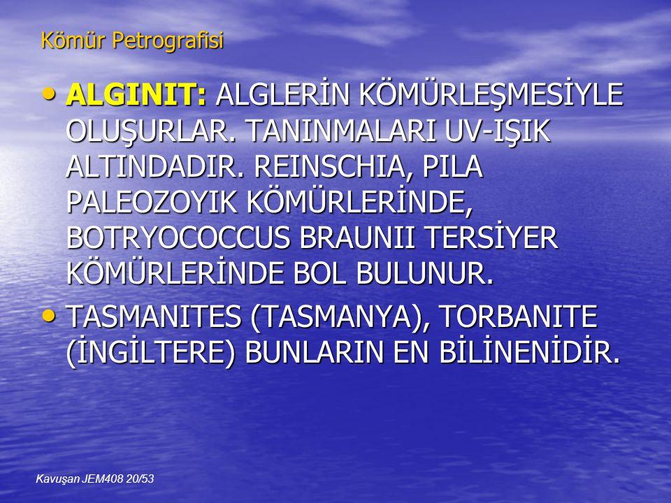 Kömür Petrografisi • ALGINIT: ALGLERİN KÖMÜRLEŞMESİYLE OLUŞURLAR.
