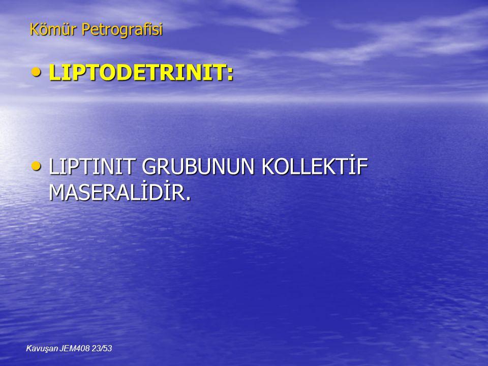 Kömür Petrografisi • LIPTODETRINIT: • LIPTINIT GRUBUNUN KOLLEKTİF MASERALİDİR. Kavuşan JEM408 23/53