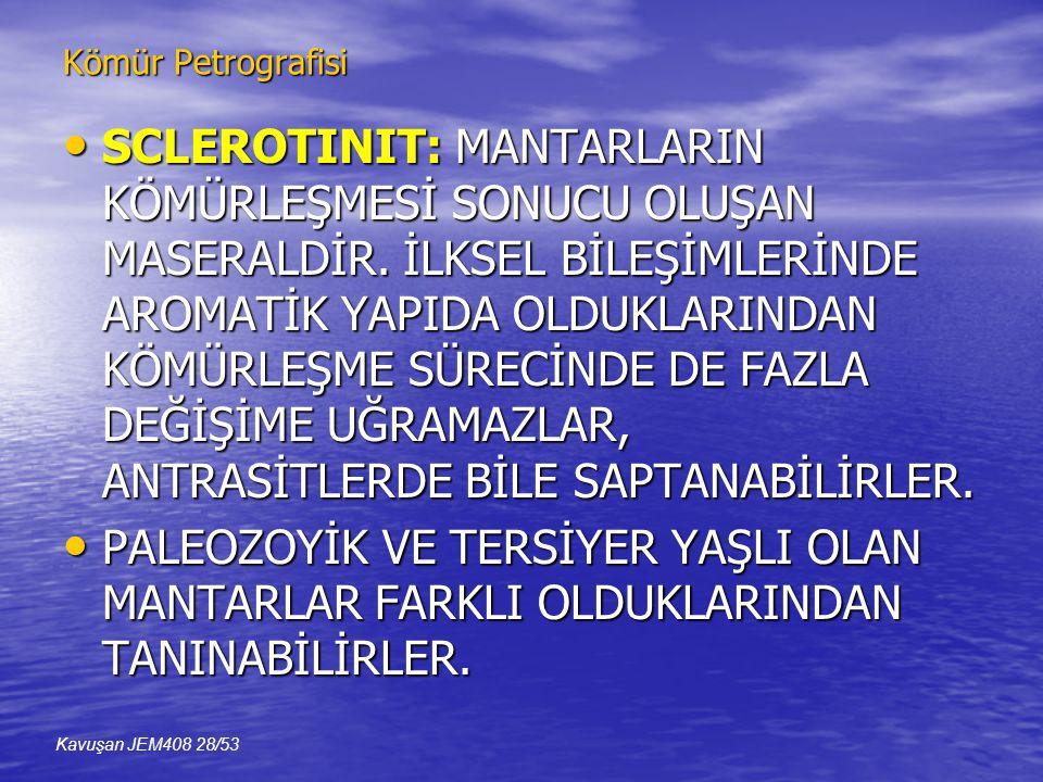 Kömür Petrografisi • SCLEROTINIT: MANTARLARIN KÖMÜRLEŞMESİ SONUCU OLUŞAN MASERALDİR.