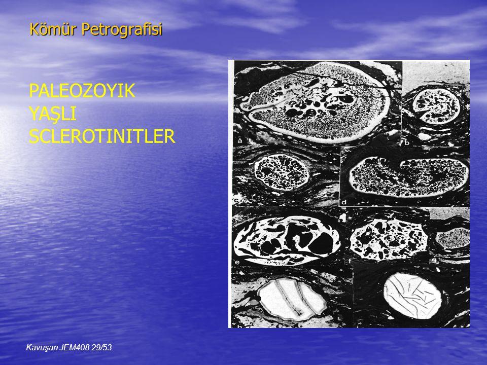 Kömür Petrografisi PALEOZOYIK YAŞLI SCLEROTINITLER Kavuşan JEM408 29/53