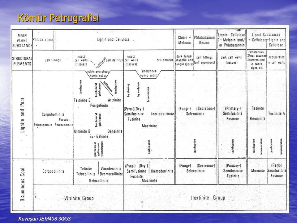 Kömür Petrografisi Kavuşan JEM408 36/53