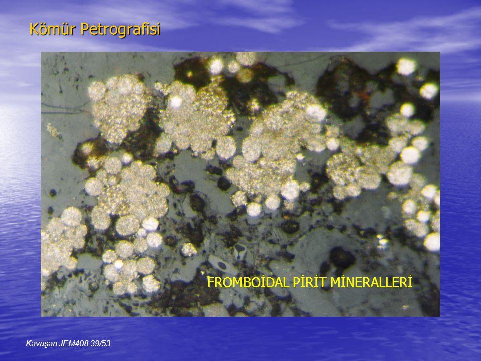Kömür Petrografisi FROMBOİDAL PİRİT MİNERALLERİ Kavuşan JEM408 39/53