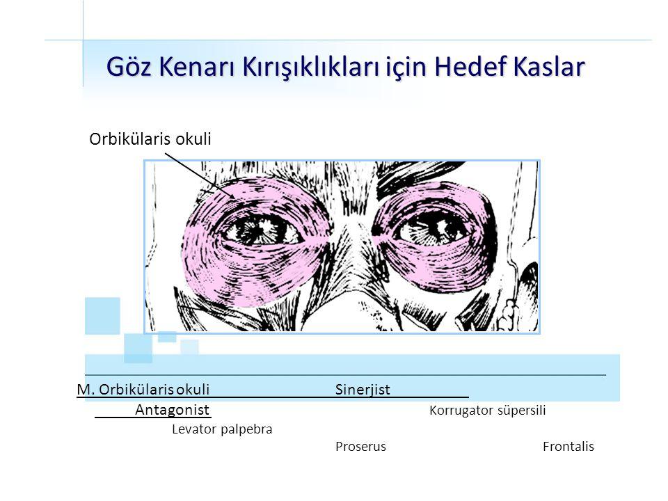 Orbikülaris okuli Göz Kenarı Kırışıklıkları için Hedef Kaslar M. Orbikülaris okuliSinerjist Antagonist Korrugator süpersili Levator palpebra Proserus