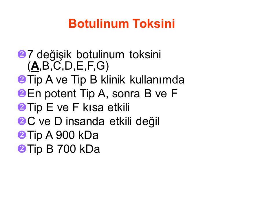 Botulinum Toksini  7 değişik botulinum toksini (A,B,C,D,E,F,G)  Tip A ve Tip B klinik kullanımda  En potent Tip A, sonra B ve F  Tip E ve F kısa etkili  C ve D insanda etkili değil  Tip A 900 kDa  Tip B 700 kDa