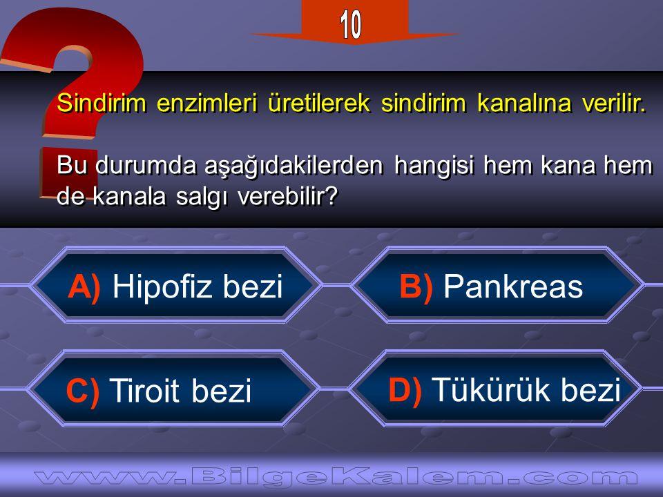 Osmanlı Devleti başlangıçtan itibaren Mutlak Monarşi ile yönetilmiştir.