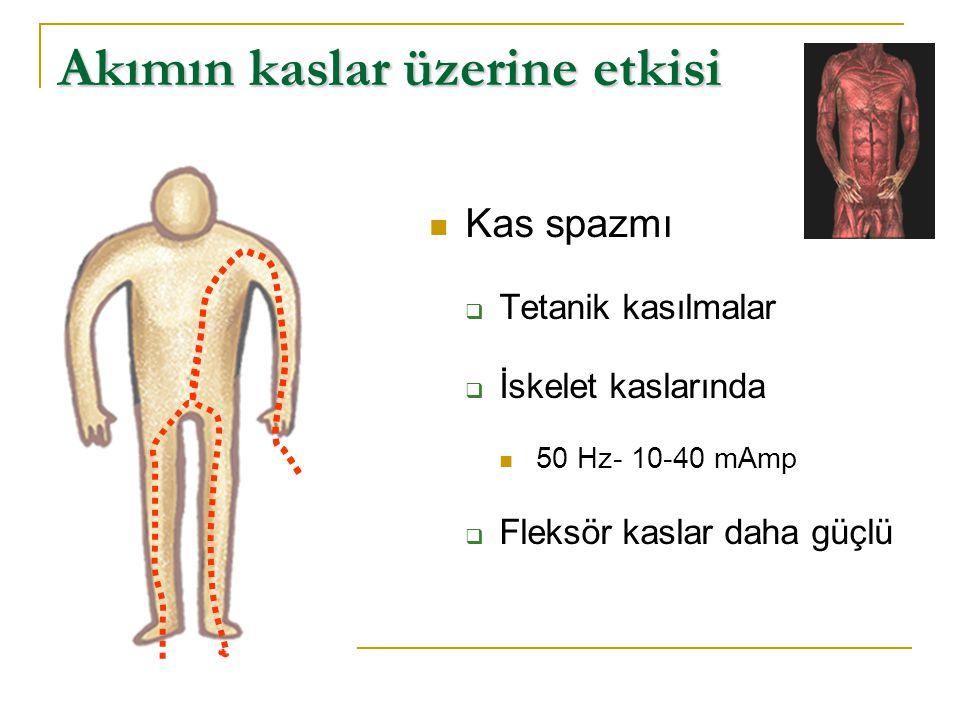 Akımın kaslar üzerine etkisi  Kas spazmı  Tetanik kasılmalar  İskelet kaslarında  50 Hz- 10-40 mAmp  Fleksör kaslar daha güçlü