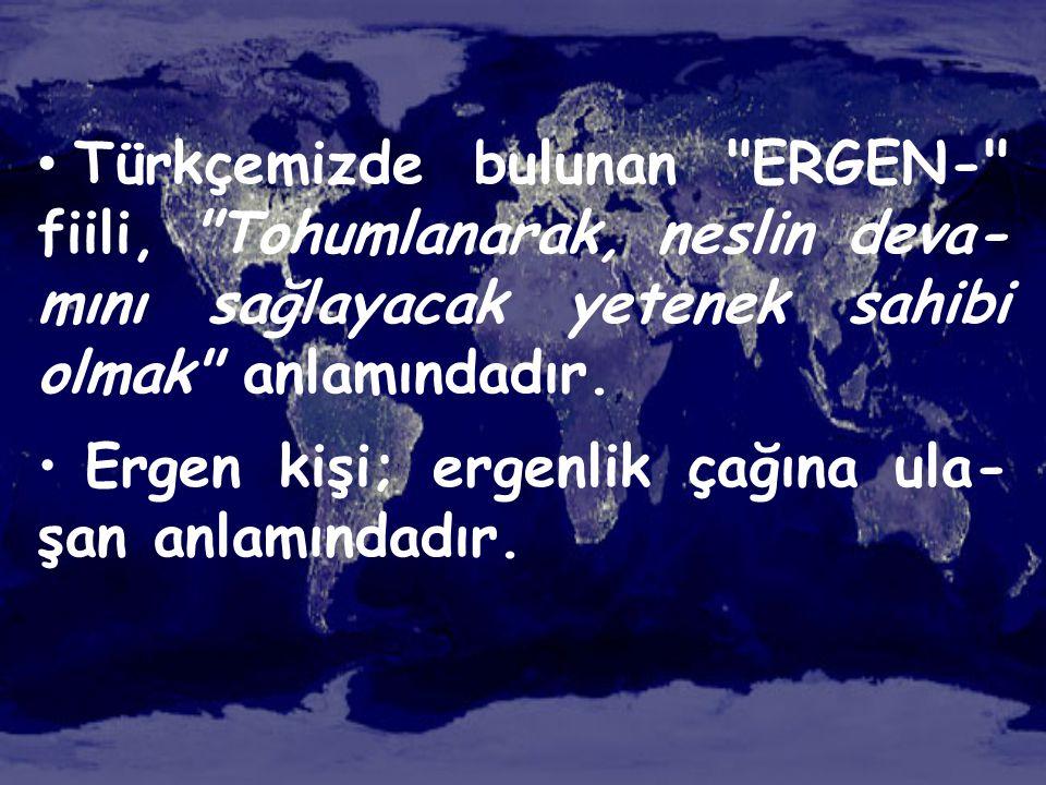 • Türkçemizde bulunan