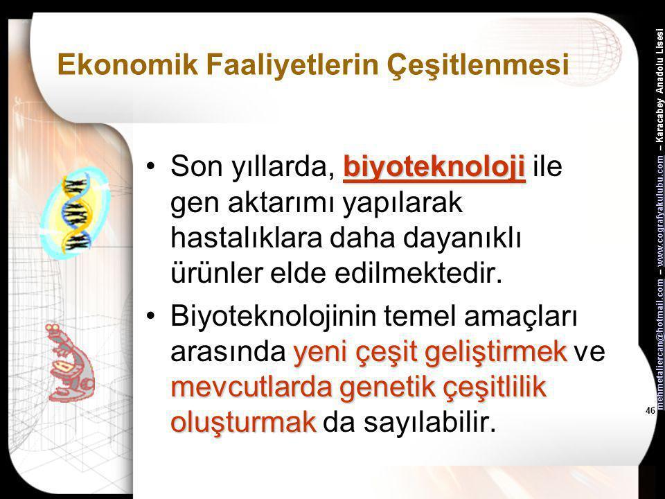 mehmetaliercan@hotmail.commehmetaliercan@hotmail.com – www.cografyakulubu.com – Karacabey Anadolu Lisesiwww.cografyakulubu.com 45 Ekonomik Faaliyetler