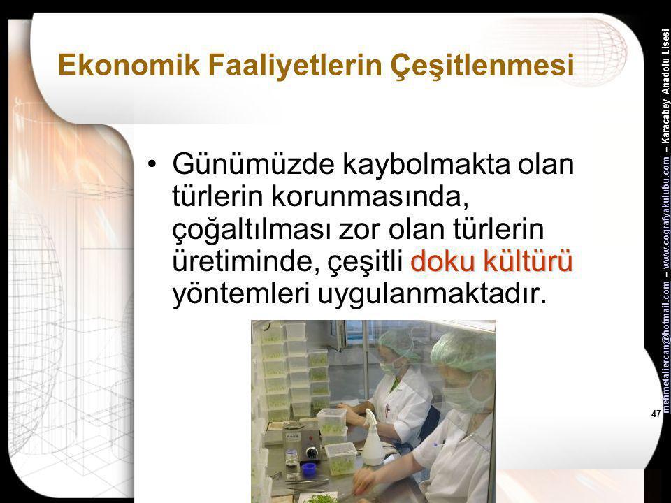 mehmetaliercan@hotmail.commehmetaliercan@hotmail.com – www.cografyakulubu.com – Karacabey Anadolu Lisesiwww.cografyakulubu.com 46 Ekonomik Faaliyetler