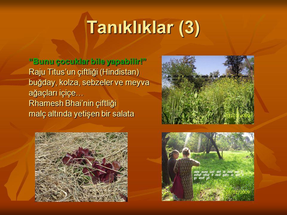 Tanıklıklar (3) Bunu çocuklar bile yapabilir! Raju Titus'un çiftliği (Hindistan) buğday, kolza, sebzeler ve meyva ağaçları içiçe… Rhamesh Bhai'nin çiftliği malç altında yetişen bir salata