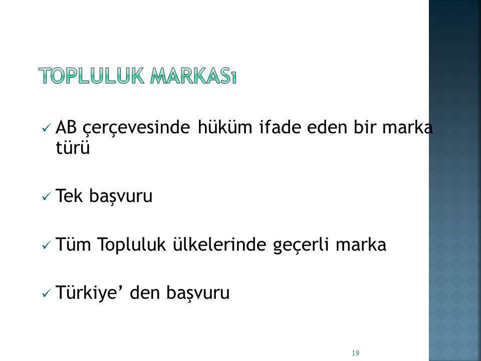  AB çerçevesinde hüküm ifade eden bir marka türü  Tek başvuru  Tüm Topluluk ülkelerinde geçerli marka  Türkiye' den başvuru 19