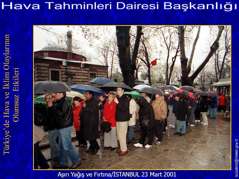 Fırtınadan Dolayı Yıkılan Ağaç/ÇORUM 15 Ağustos 2001 Türkiye'de Hava ve İklim Olaylarının Olumsuz Etkileri