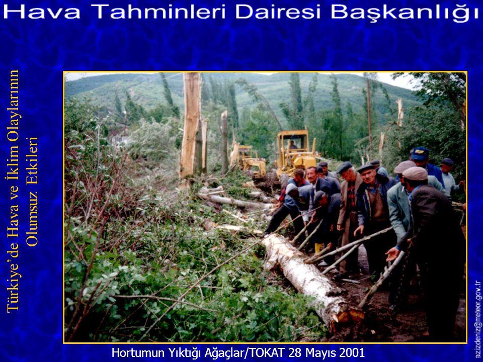 Gazipaşa'da Meydana Gelen Hortum/ANTALYA 16 Şubat 2001 Türkiye'de Hava ve İklim Olaylarının Olumsuz Etkileri