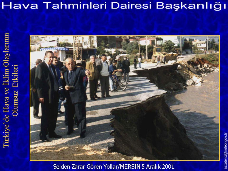 Selden Zarar Gören Seralar/MERSİN 23 Aralık 2001 Türkiye'de Hava ve İklim Olaylarının Olumsuz Etkileri
