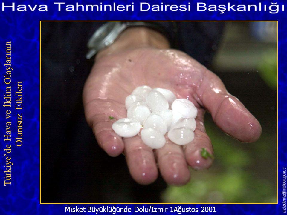 Dev Buz Saçakları/ERZURUM 4 Aralık 2001 Türkiye'de Hava ve İklim Olaylarının Olumsuz Etkileri