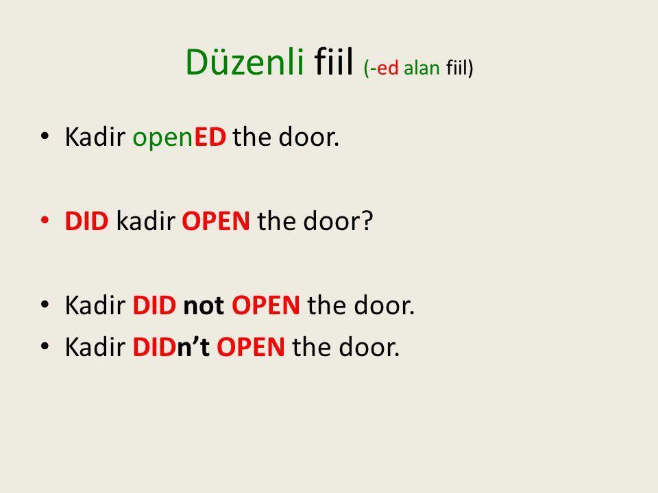 Düzenli fiil (-ed alan fiil) •K•Kadir openED the door.