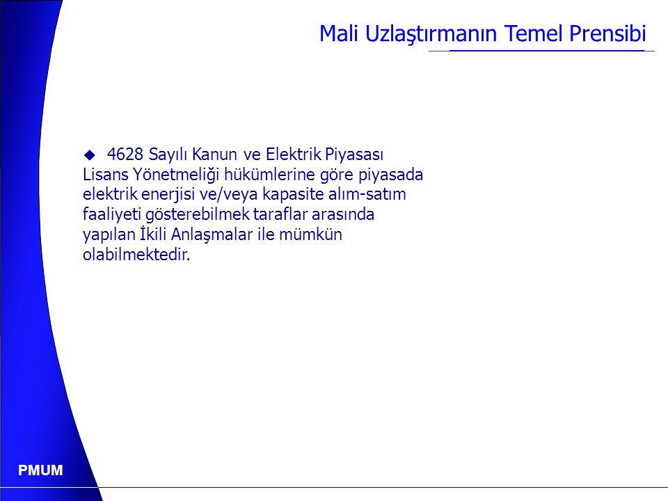PMUM Türkiye İletim Sistemi ve Bölgeleri
