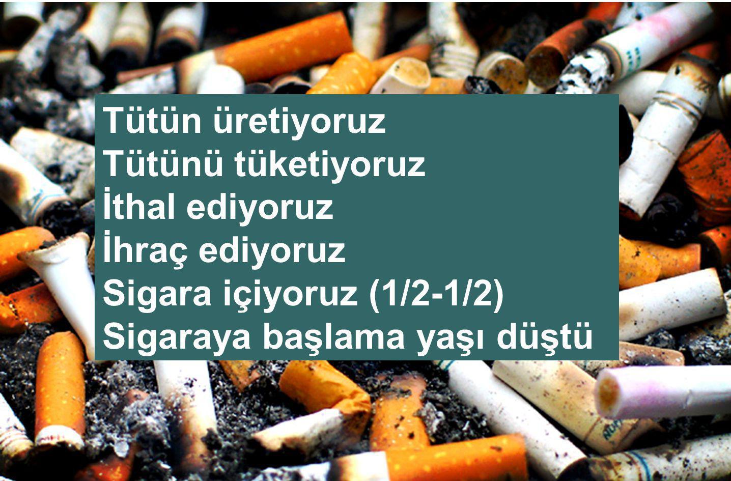 KÜRESELLEŞME & SİGARA ASH, Tobacco: Global Trends, 2006.