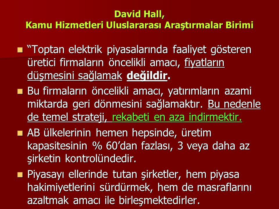 """David Hall, Kamu Hizmetleri Uluslararası Araştırmalar Birimi  """"Toptan elektrik piyasalarında faaliyet gösteren üretici firmaların öncelikli amacı, fi"""