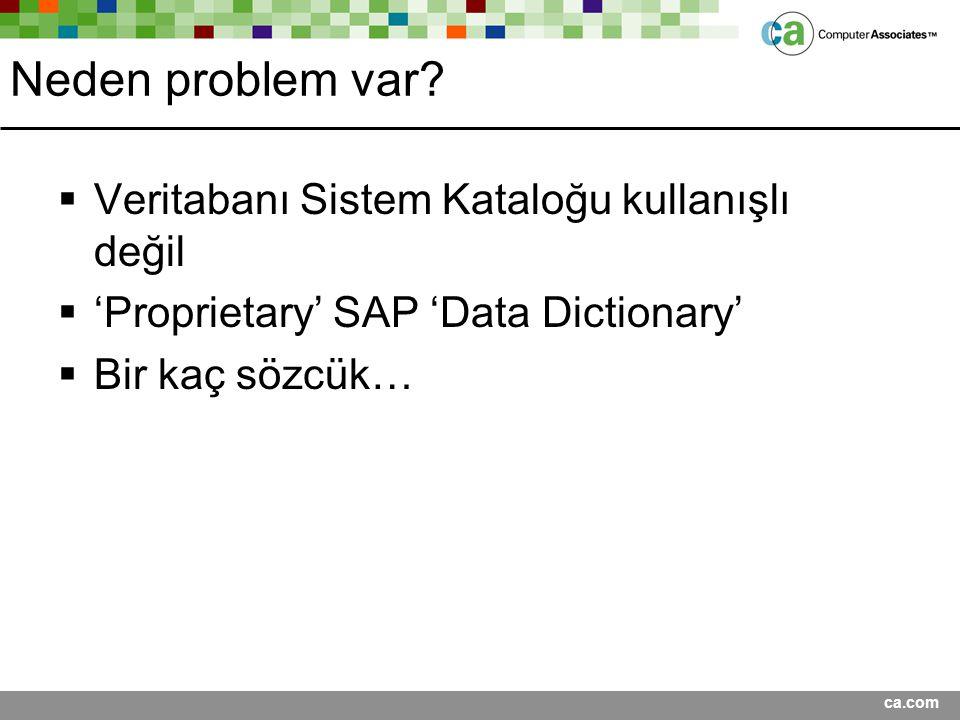 ca.com Neden problem var?  Veritabanı Sistem Kataloğu kullanışlı değil  'Proprietary' SAP 'Data Dictionary'  Bir kaç sözcük…