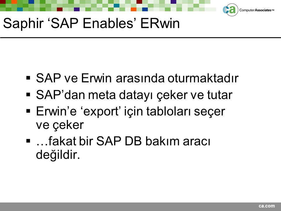 ca.com Saphir 'SAP Enables' ERwin  SAP ve Erwin arasında oturmaktadır  SAP'dan meta datayı çeker ve tutar  Erwin'e 'export' için tabloları seçer ve