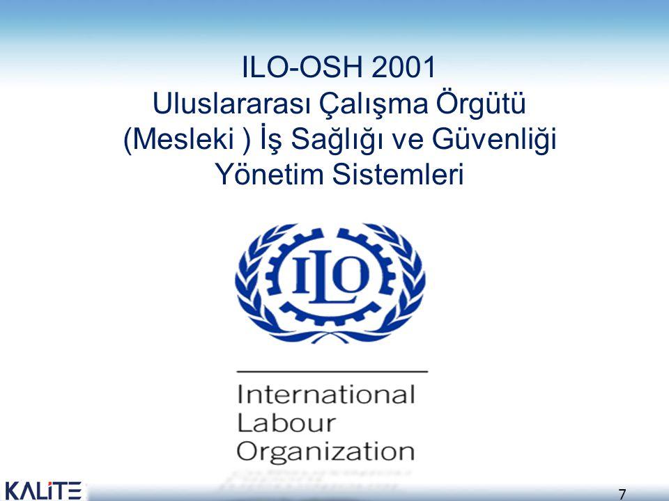 8 ILO tarafından, Pratik yönergeler şeklinde herkesin uygulayabileceği şekilde tasarlanarak geliştirilen İş Sağlığı ve Güvenliği Yönetim Sistemleri Kılavuzu ILO Yönetim Kurulunca Haziran- 2001 tarihinde onaylanmış ve Aralık-2001 de yayınlanmıştır
