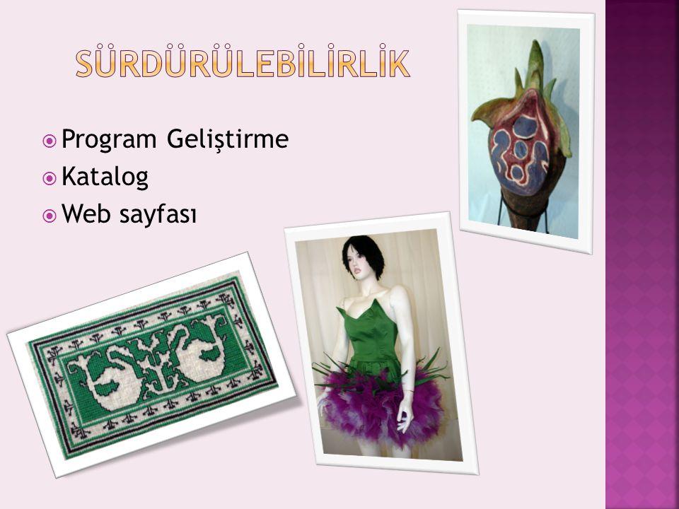  Program Geliştirme  Katalog  Web sayfası