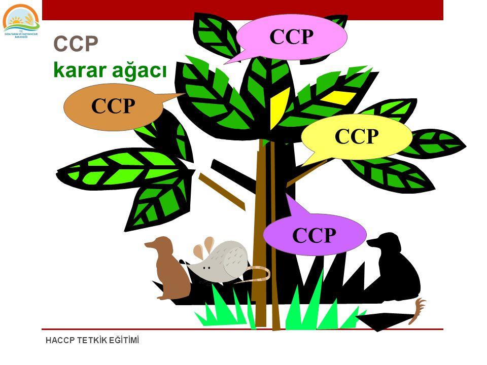 KARAR AĞACI KKN'larının belirlenmesinde • Hammadde karar ağacı • Proses karar ağacı kullanılabilmektedir 7. KRİTİK KONTROL NOKTALARININ BELİRLENMESİ